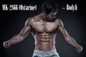 Ostarine Reviews - Shocking Results & Information About MK2866