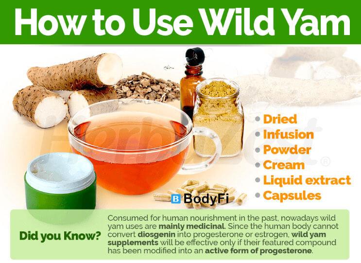 Wild Yam Roots
